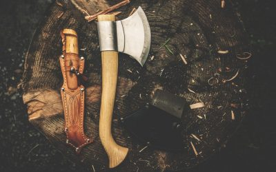 Best Bushcraft Projects for Beginners