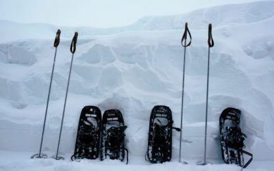 Are Costco Snowshoes Any Good?